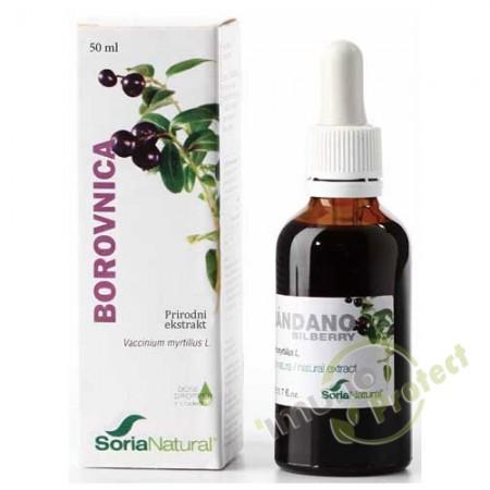 Borovnica – prirodni ekstrakt 50 ml