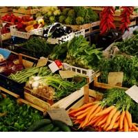 Esencijalni nutrijenti IV  - Antioksidansi i probiotici